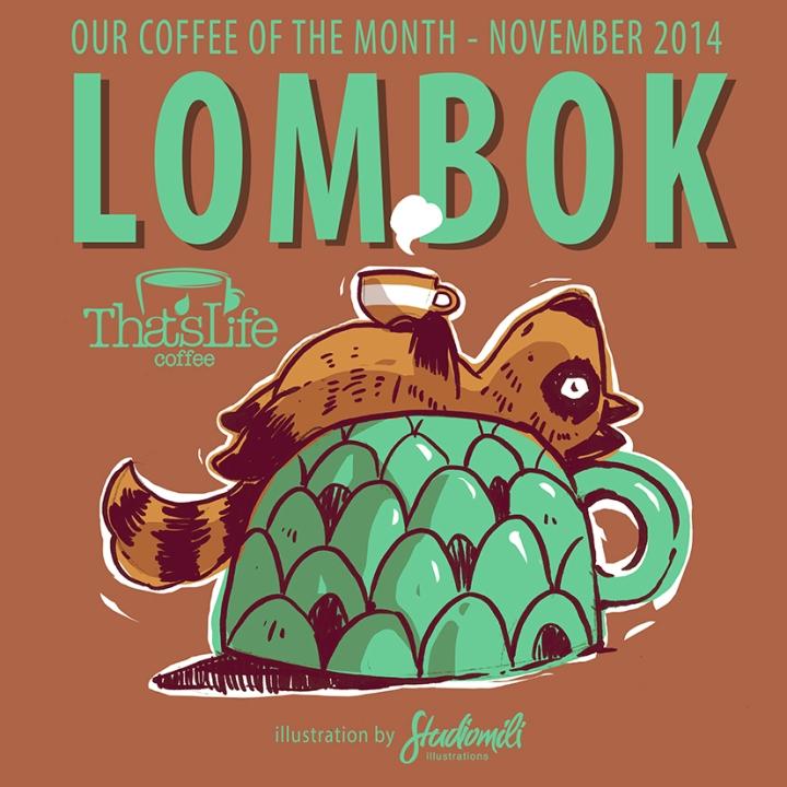 Lombok Nov2014 P