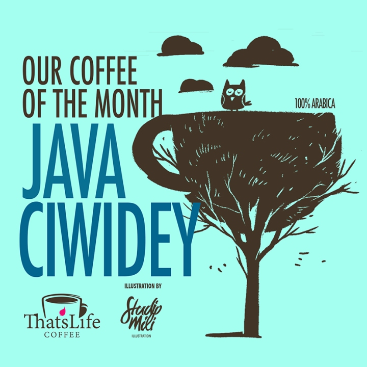 TLC JAVA CIWEDEY JAN 2017.jpg